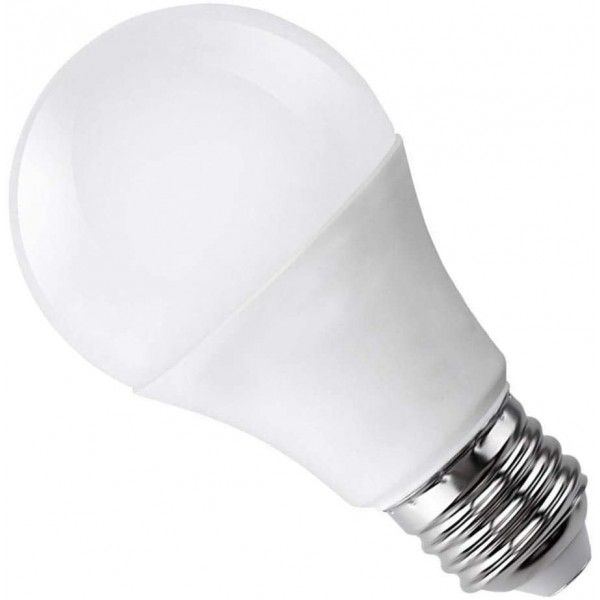AMPOULE LED E27 A80 20W 220V BLANC FROID 6000K RADIANCE LIGHTING  - 1