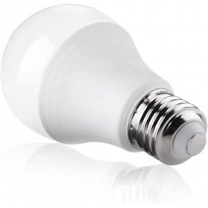 AMPOULE LED E27 A80 20W 220V BLANC FROID 6000K RADIANCE LIGHTING  - 2