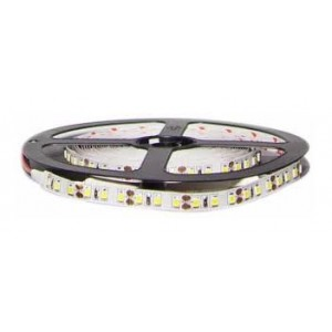RUBAN 2835/120LED  5 METRES12V BLANC EKOLED